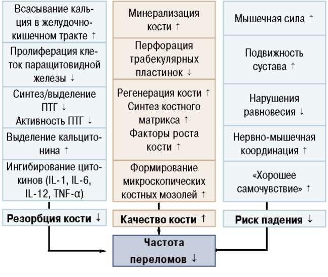 (РА) и болезнью Крона,